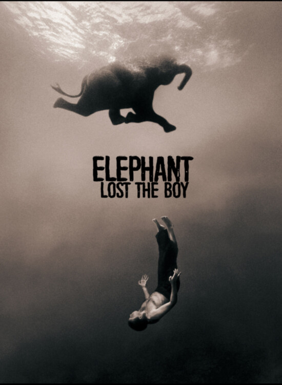 Elephant Lost The Boy, Alidor Dolfing